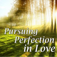 Pursuing Perfection in Love CD Set by Joe Sweet